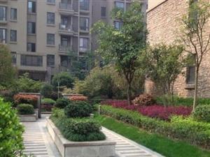 城市花园清水毛坯大3房两证齐全送15平方入门阳台
