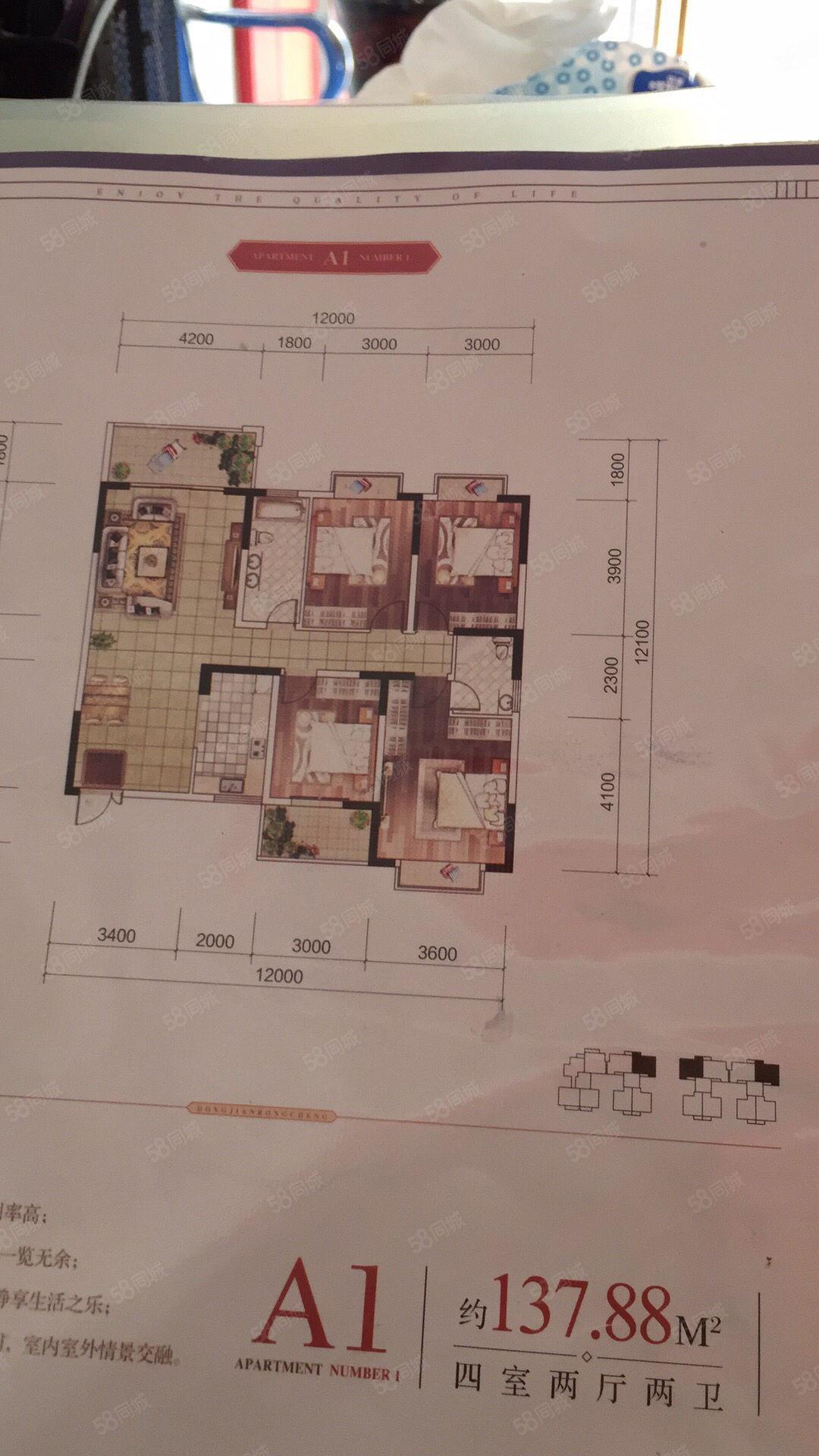 悦城绿州正对面,竹苑路第一排开边房,4室,好楼层