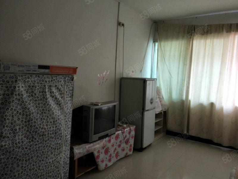 金码头单身公寓,随时看房