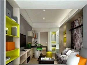世纪公园惠公寓豪华精装一室一厅一卫地铁旁首付10万