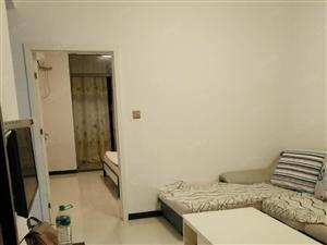 宜阳大道嘉兴广场旁翰林世家金领公寓精装一房一厅格局