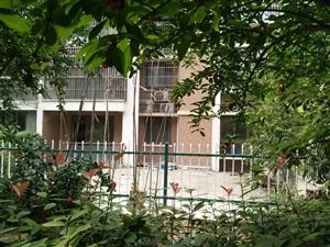 急售银河绿苑北区多层1楼带大院子3室两厅毛坯