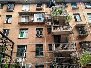 拆迁红砖神房!市中心两房并排朝南,送15m私人露台,有架空