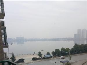 现代城湖景3楼新装证齐可按揭