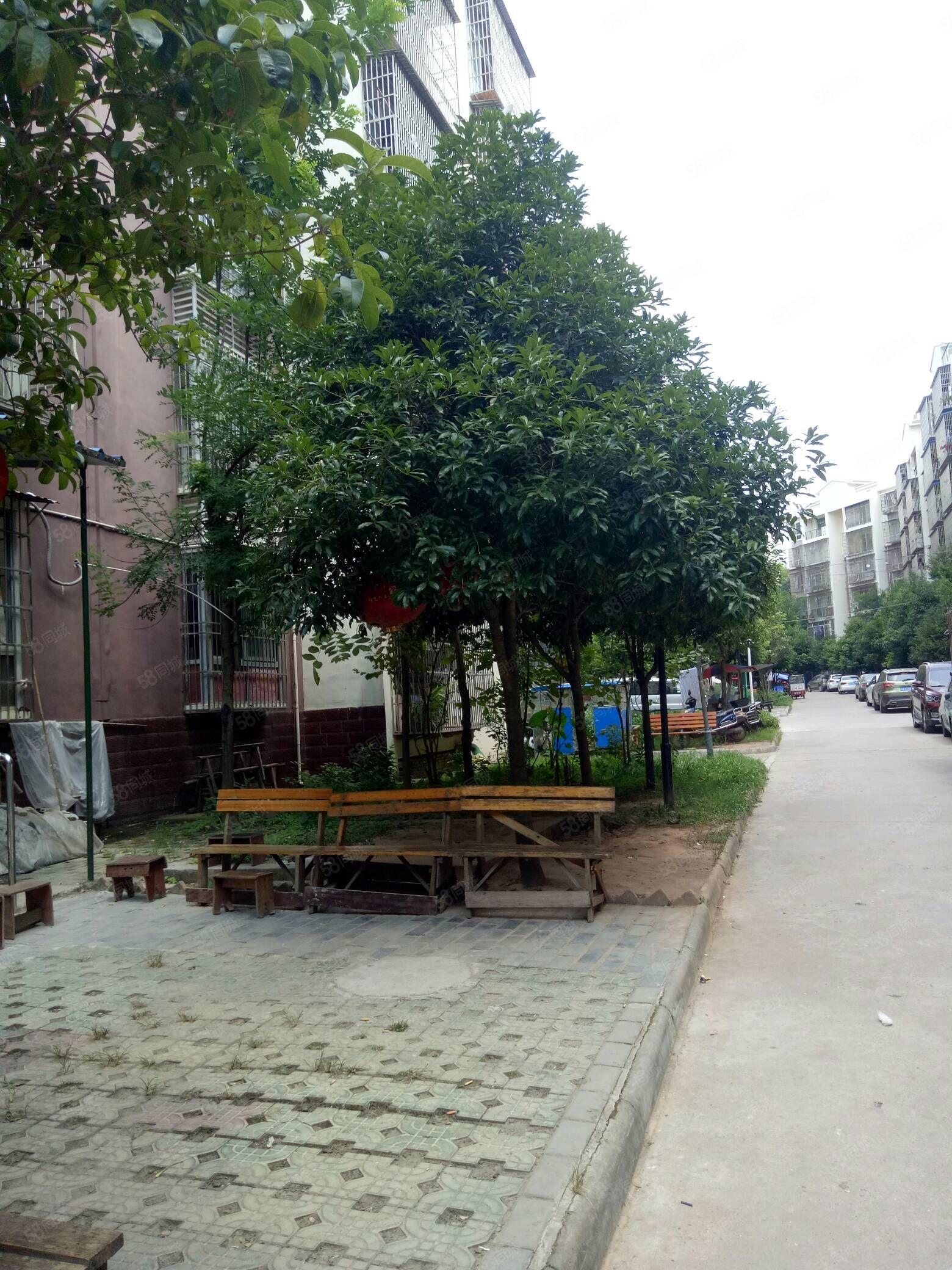 萍果湾中间楼层3楼稀缺房源