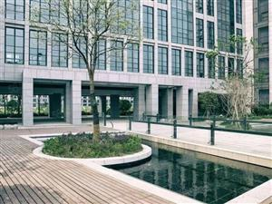 杭州余杭未来科技城,80平方,毛坯房,售价228万