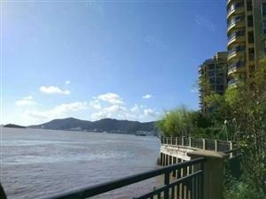 美丽海岛城,悠悠绿城中!我们澳门威尼斯人网站绿城五期呈现海岛一线海景房