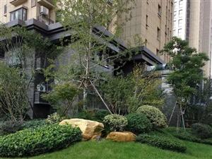 碧桂园临街门面房均价9600首付65可改合同随时看房走一手