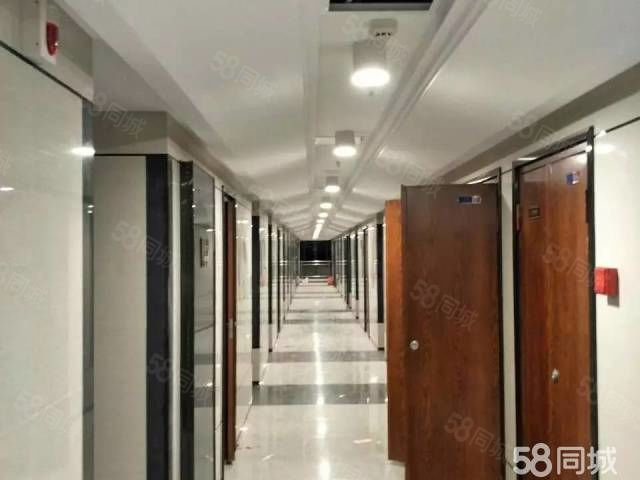 东湖臻悦体育中心旁临近万达商圈1室1厅1卫月租1800