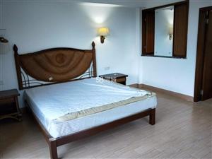 博鳌玉带湾1室1厅