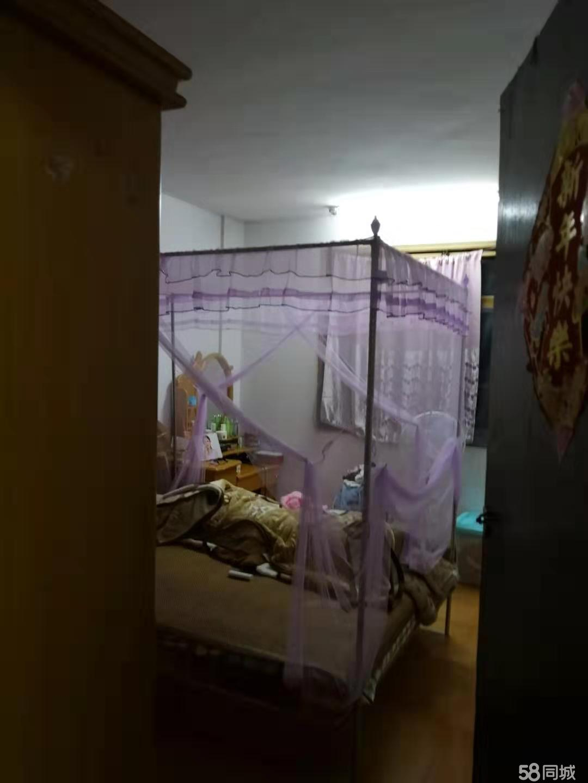 后坂新村 两室两厅一卫