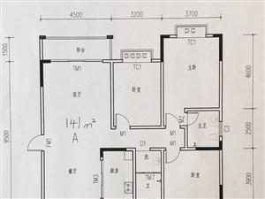 中间楼层三房二厅