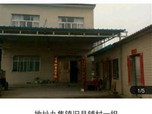 丁兰社区自建房1室2厅1卫
