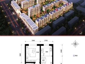 卢龙未来城2室2厅1卫送车位