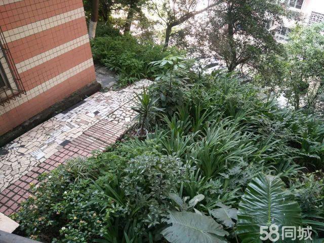 降!再降!低价电脑城3室带40平米花园急售34.9万