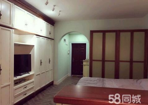 龙马大道龙城丽都1室1厅40平米中等装修