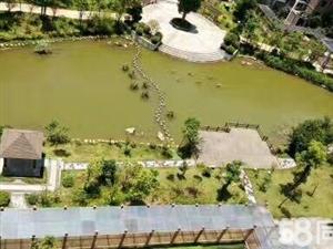 新环境独家推荐【新景家园顶楼复式,十年毛坯无一漏水痕迹