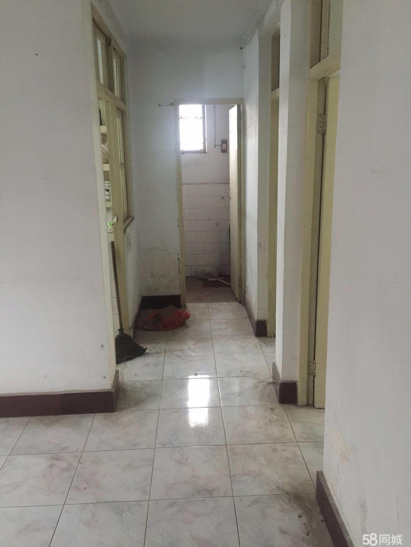 川汇区八一路人才交流中心外贸家属院2室1厅1卫80平米