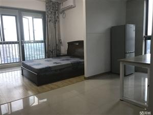 中央公馆园林小区独门独户公寓设备齐全拎包入住有双阳台1室1厅1卫