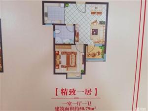海景现房凤凰湖3室2厅1卫105平米多层高层可租可售回报快