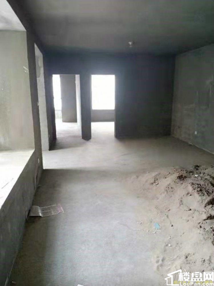 世纪大道 秦都公安分局 电梯大两室毛坯房 无大税可随意装修