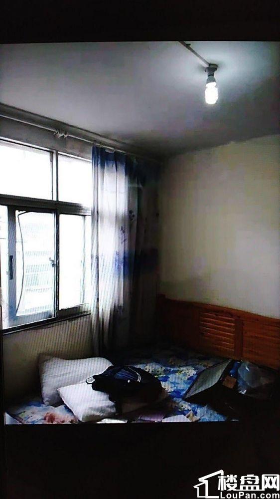 白沙�P文明小�^2室1�d1�l