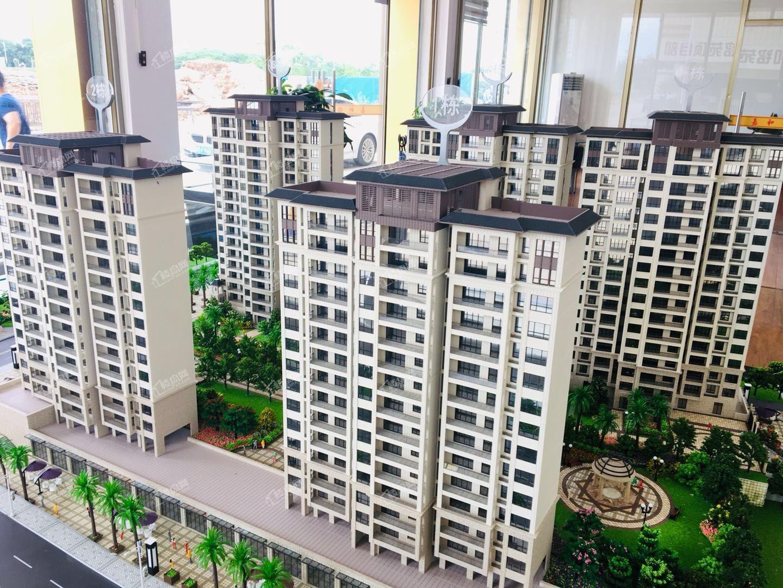 興寧嘉和銘苑新圩高端電梯房小區旁邊就是小學中學