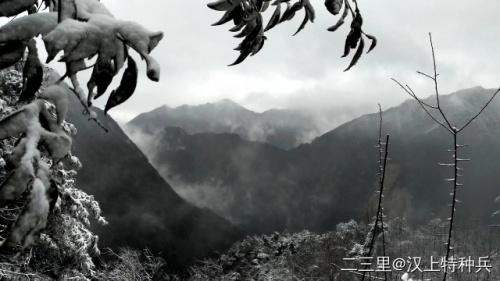 小寒时节,汉中这些雪景美成画了~