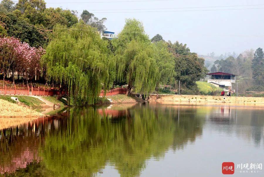 安逸!仁寿13个乡镇建起公园!太美了!