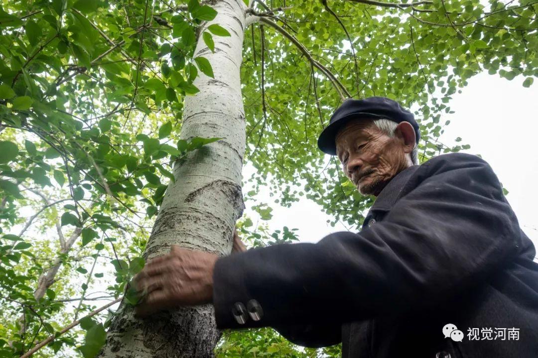 �璐�8旬老人挖木瓢60年,成��璐ㄗ詈蟮耐谄叭�