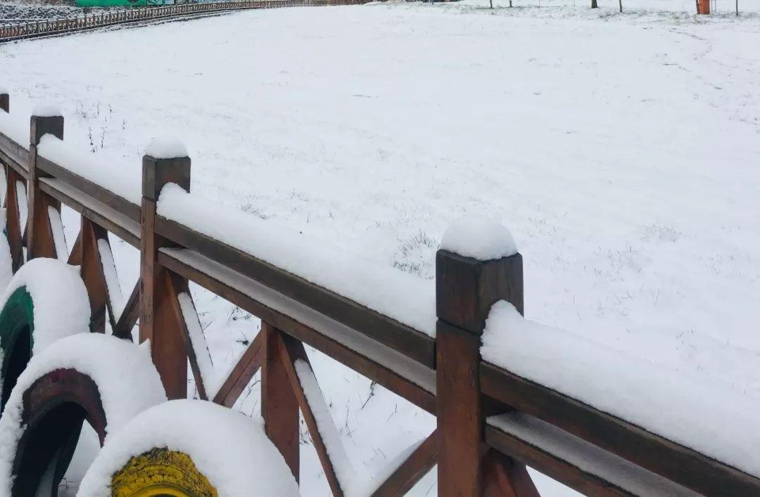 下雪了!�h中�@��滑雪�鲆寻籽┌}�},滑雪技巧�W起�恚�