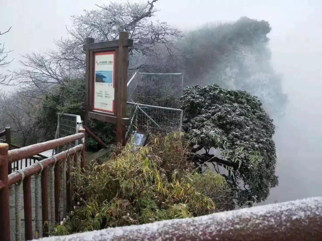 冷得发抖,四川,下雪了!