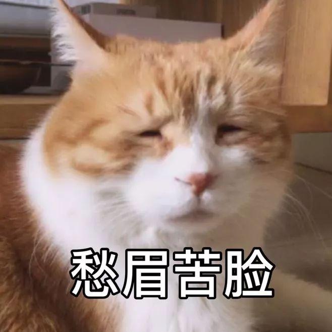 西安:心疼!�r民工被拖欠工�Y,大�W生陪爸爸住在冰冷工地�薪....