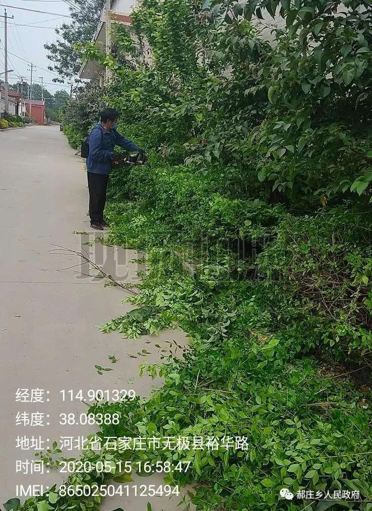 无极县【农村环境治理】郝庄乡在行动
