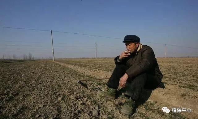 关系到每一个人,中国农业最真实现状!