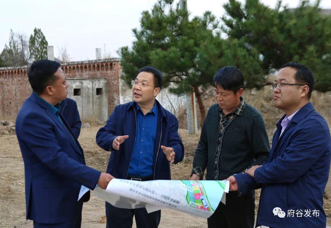 县委书记李新功到碛塄农业园区调研指导工作