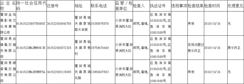 霍邱消防救援大队2019年检查结果公示!