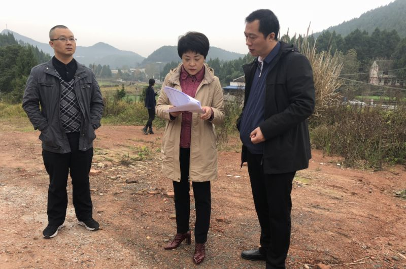 廖雪梅副市长来盐督导环保工作