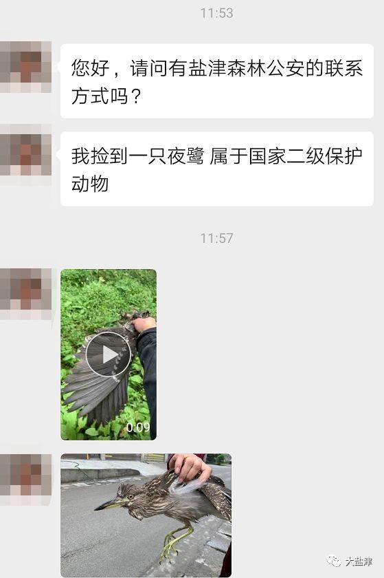 �}津小伙�斓揭恢圾B,上�W一查��一跳(�D)