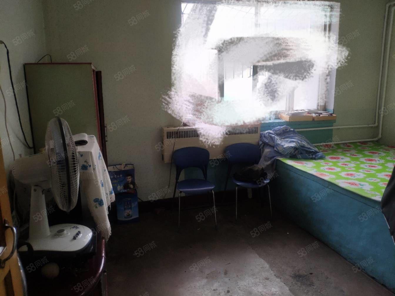 林西南新區一層一室一廳帶院
