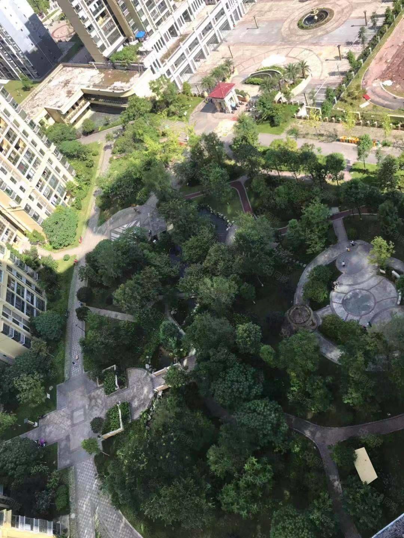 恒阳瑞锦城 可直接过户按揭 清水三室 中间楼层 视野超好
