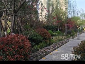 园林式小区、临湛河、176平、可贷款、可更名