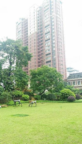 中心地段泰禾红树林高绿化小区毛坯三房楼层好采光佳地段优