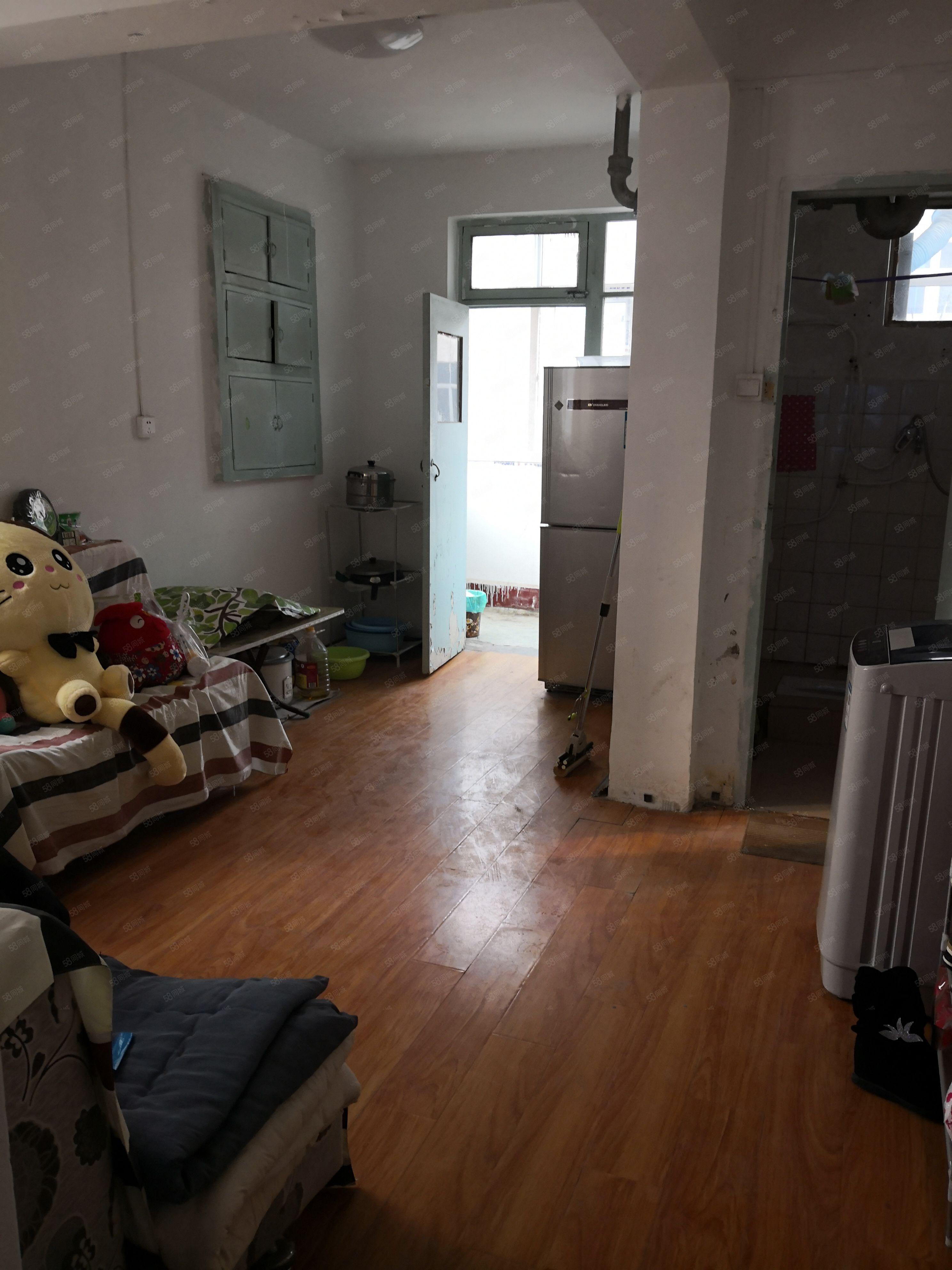 彩虹老区一室一厅精装修