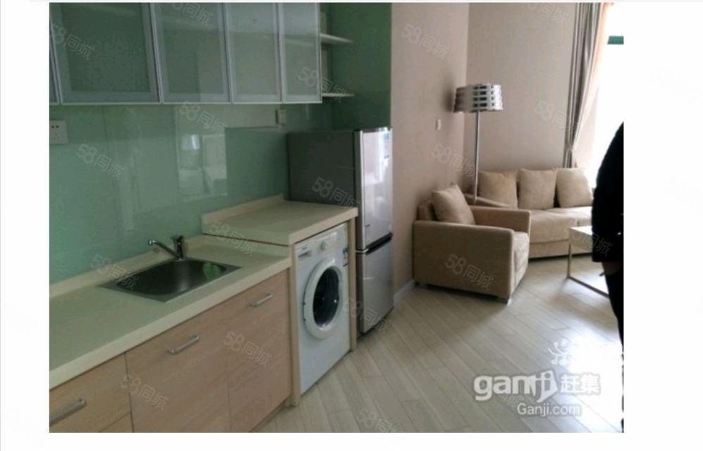 启东市区润福花园1室1厅50平米豪华装修半年付