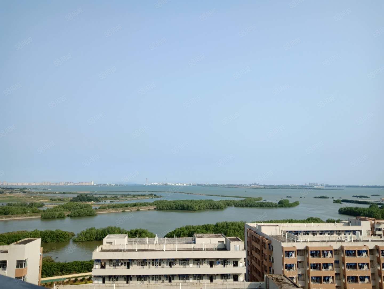 海景明珠中高层,可观看到一线海景,四房两厅,东南向