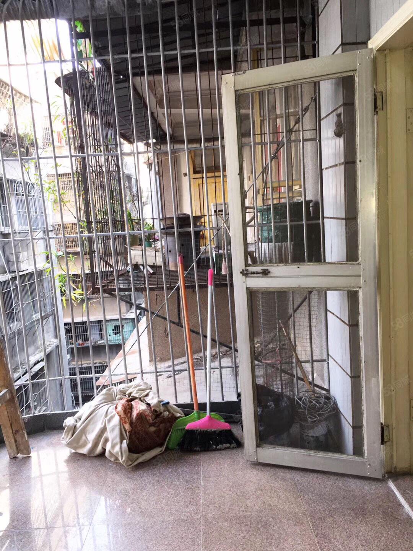 进安街娃娃城对面5楼,2房2厅,前后阳台