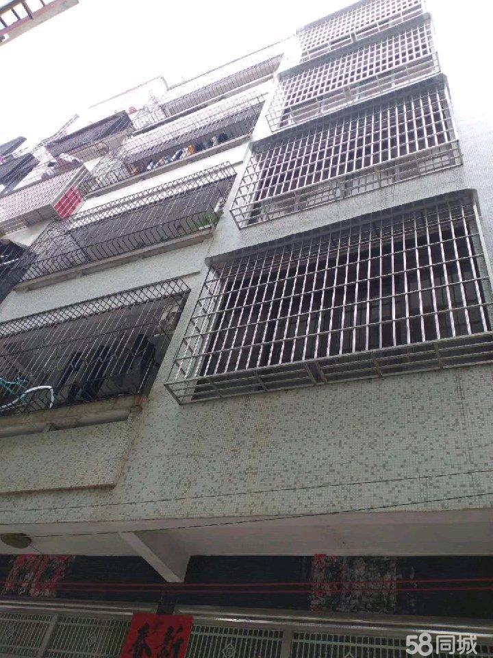化州文仙坡整幢五层半楼房转让