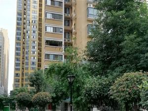 新市政府旁儒林商都精装一室可按揭首付27万