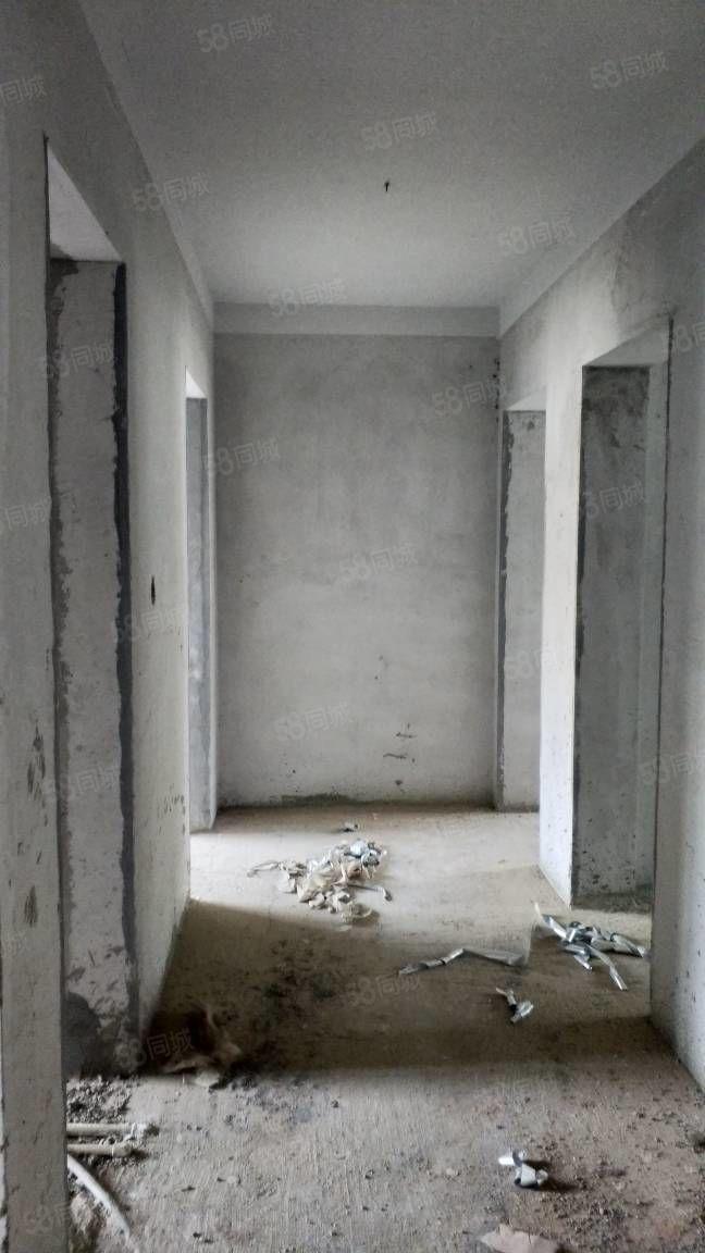 枫林湾5楼东单东户,无转让费,不捆绑车位和储藏室,五一交房